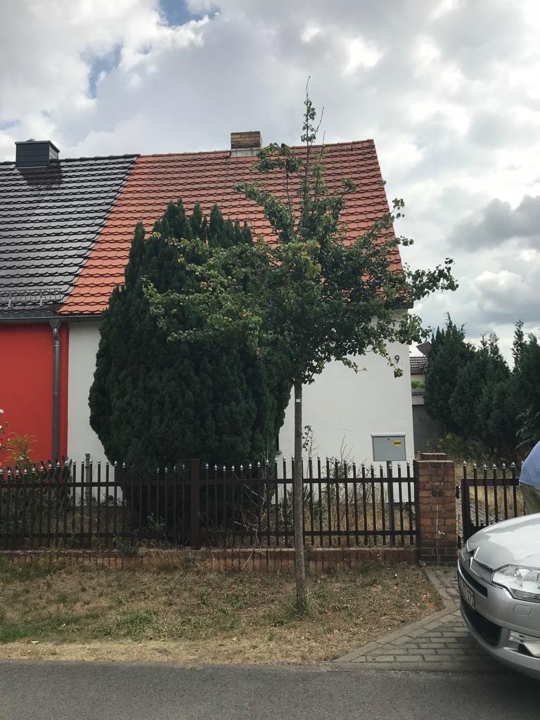Doppelhaushälfte in Plessa zu verkaufen.